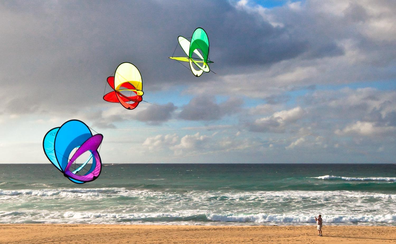 Other Kites