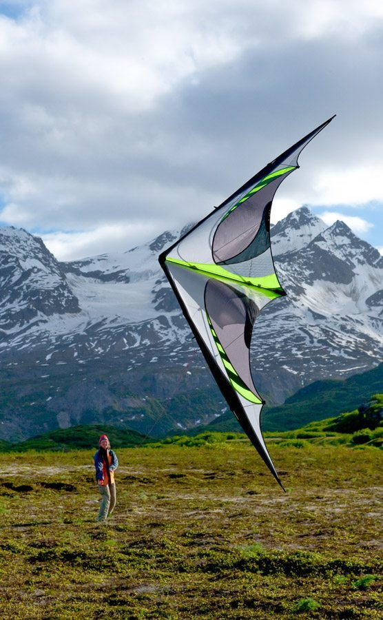 Prism E3 Kite