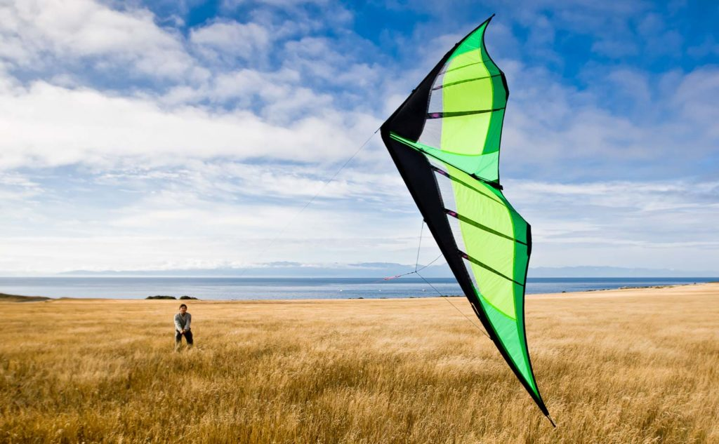 Prism Hypnotist Kite