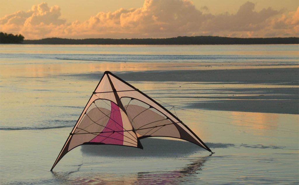 Prism Quantum Pro Kite